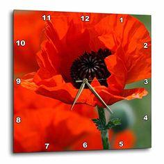 3dRose dpp_29205_3 Beautiful Red Poppy Wall Clock, 15 x 1... https://www.amazon.com/dp/B00BDHE3F2/ref=cm_sw_r_pi_dp_x_EtV9xbBYZKH1C