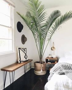8 Peaceful ideas: Simple Minimalist Home Woods minimalist bedroom ideas inspiration.Minimalist Bedroom Ideas Nooks simple minimalist home woods.Minimalist Home With Kids Articles. Tropical Bedrooms, Tropical Master Bedroom, Decoration Inspiration, Bedroom Inspiration, Decor Ideas, Decorating Ideas, Boho Ideas, Interior Inspiration, Minimalist Decor