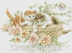 Photo Cross Stitch Fairy, Cross Stitch Embroidery, Cross Stitch Patterns, Cross Stitch Animals, Needlepoint, Mustang, Crochet, Vintage World Maps, Wall Photos