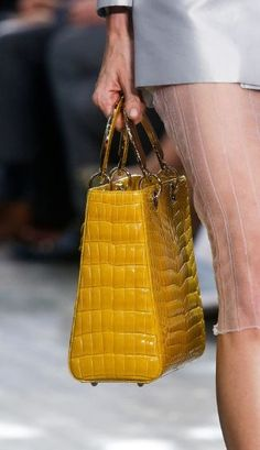 Christian Dior Spring 2014 RTW - Details - Fashion Week - Runway, Fashion Shows and Collections - Vogue Christian Dior 2014, Christian Dior Vintage, Crocodile, Fashion Bags, Fashion Show, Fashion 2014, Paris Fashion, Runway Fashion, Spring Fashion