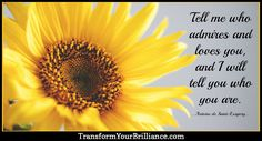 Tell me who admires and loves you, and I will tell you who you are. ...Antoine de Saint-Exupery... http://transformyourbrilliance.com/
