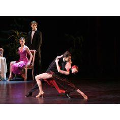Wrestling, Ballet, Concert, Sports, Lucha Libre, Hs Sports, Concerts, Ballet Dance, Sport