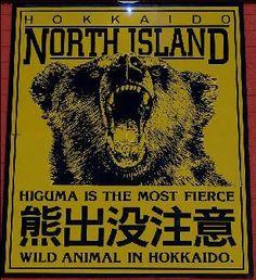 hokkaido japan bears clothing - Google Search
