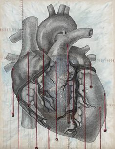 Items similar to Anatomy of a Human Heart (Strings)- x fine art print on archival paper, hand signed by artist on Etsy Heart Anatomy, Oh My Heart, Anatomical Heart, Heart Images, Human Heart, Body Love, In A Heartbeat, Fine Art Prints, My Arts