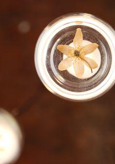 Scartissue » Rusty Chandilier Glass