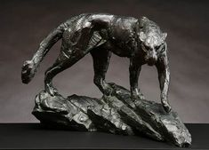 Leopard walking on rocks by Dylan Lewis for more please visit http://finearts.co.za