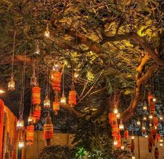 22 Ideas For Tree Wedding Reception Beautiful Desi Wedding Decor, Wedding Reception Flowers, Wedding Mandap, Wedding Flower Decorations, Wedding Stage, Tree Wedding, Wedding Ideas, Evening Wedding Decor, Indian Wedding Night