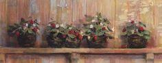 Strawberries+in+Pots
