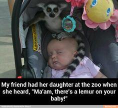 OMG I would die!