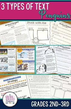 Second and third grade teachers this Penguin reading has 3 types of text! One product with Informational Text, a Fictional Story, and a Non-Fiction Poem. To help students understand the different penguin species there are special Fun Facts About Penguins cards about Emperor, Adelie, Galapagos, Gentoo, African, Chinstrap penguins and more!|Penguins|Holidays/Seasonal| Informational Text|Close Reading|