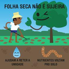 BioOrbis: Folhas... Environmental Engineering, Study Tips, Worlds Of Fun, Social Studies, Organic Gardening, Sustainability, Knowledge, Family Guy, Science