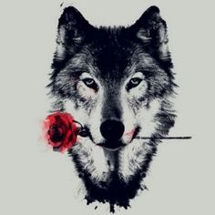 Rose and wolf