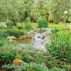 Staw w ogrodzie to fantastyczna sprawa. Nie tylko można nad jego brzegiem wypoczywać, ale woda poprawia mikroklimat ogrodu i przyciąga najrozmaitsze owady i płazy.