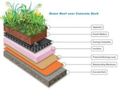 SARNAFIL GREEN ROOF SYSTEMS  The Recognized Leader in Long-term Green Roof Solutions    Sometimes called vegetated roofs, eco roofs, or living roofs, green roofs offer a number of sustainable advantages on an otherwise empty, unused space.