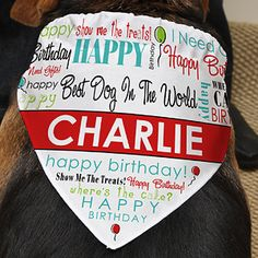 SUCH  a cute idea! Every puppy deserves this on their Birthday! It's the Happy Birthday Personalized Dog Bandana - only $12.95 from PMall! You can customize it with your dog's name and anything you want in text right above it! #Dog #Birthday #Bandana