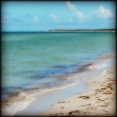 10 things to do with kids in Captiva and Sanibel islands Florida