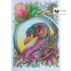 "Colored by Drawn by me Coloring book ""Veter unosit tsvety"" (… Adult Coloring, Coloring Books, Colouring, Bird Pictures, Russia, Arts And Crafts, Tapestry, Birds, Draw"