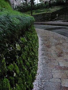 広坂 雨の釉薬