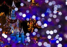 Disneyland Paris Christmas Bokeh - Disney Tourist Blog http://www.disneytouristblog.com/disneyland-paris-christmas-bokeh/