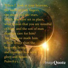 Psalm 8 : 3-5