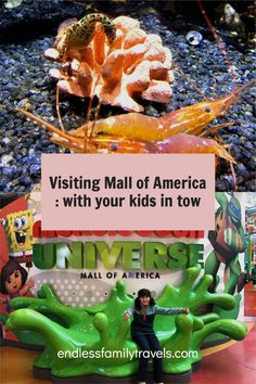 Visiting Mall of America with your kids! There is so much to do at MOA in Minnesota - I recommend staying for a few days! #MallOfAmerica #MOA #Minnesota #Kids Winter Family Vacations, Best Family Vacation Spots, Mall Of America, North America, Romantic Winter Getaways, Sunny Beach, Minnesota, Kids, Young Children