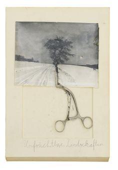 Anselm Kiefer, Unfruchtbare Landschaften, 1969