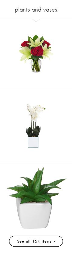 """""""plants and vases"""" by nanawidia ❤ liked on Polyvore featuring home, home decor, floral decor, red bouquet, lily bouquet, glass home decor, white lily bouquet, lily flower bouquet, silk orchid arrangement and orchid artificial flowers"""
