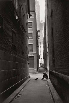 man and cat by Henri Cartier Bresson (arsivist)