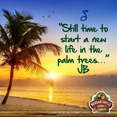 Still time to start a new life in the palm trees. Florida Quotes, Christmas Tree Forest, Tree Quotes, Beach Quotes, Ocean Quotes, Jimmy Buffett, Beach Signs, Enjoying The Sun, Getting Drunk
