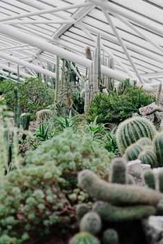 London | The Barbican Conservatory — east|west|rax