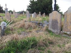 An overgrown cemetery in Carlow, Ireland.