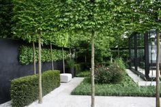 Pleached Trees Chelsea Garden Design - Your Home Design (shared via SlingPic) Back Gardens, Small Gardens, Outdoor Gardens, Courtyard Gardens, Contemporary Garden Design, Landscape Design, Urban Garden Design, Modern Landscaping, Backyard Landscaping