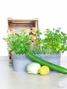 dreiraumhaus-gurken-kohlrabi-salat-mit-dip-montagsmampf-gurkensalat-mit-kohlrabi-food-rezept-lifestyleblog-leipzig-18-gurkensalat-mit-kohlrabi-food-rezept-lifestyleblog-leipzig-18
