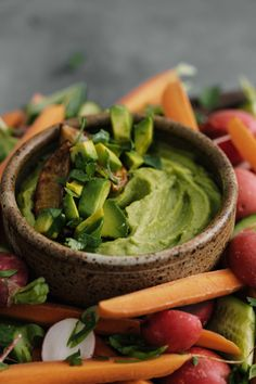 A fresh take on a white bean dip featuring charred lime/scallions pureed with white beans and fresh avocado- a perfect summer snack! Guacamole Hummus, Avocado Dip, Fresh Avocado, Healthy Cat Treats, Healthy Fruits, Healthy Eating, Healthy Snacks, White Bean Dip, White Beans