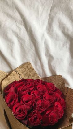 Luxury Flowers, Red Flowers, Red Roses, Beautiful Flowers, Valentines Flowers, Flower Aesthetic, Flower Wallpaper, Rose Bouquet, Cute Wallpapers