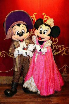*~ Mickey & Minnie ~*