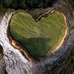 ***LOVE*** Are you looking for love? Psychic Heart - soulmate