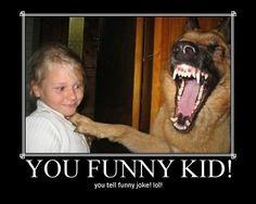 I love a dog who can appreciate a good joke!