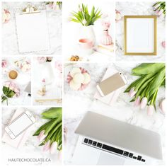 blush pink feminine styled stock photography mockup from haute chocolate for women entrepreneurs and bloggers