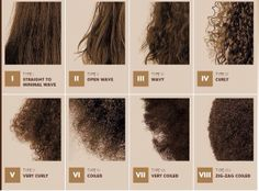 Natural hair type