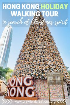 Hong Kong | Christmas | Hong Kong Christmas | Hong Kong Christmas Displays | Hong Kong Lights | Hong Kong Christmas Lights | Hong Kong Light Show | Christmas Lights | Light Show | Hong Kong Walking Tour | Christmas in Hong Kong