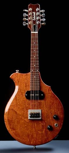 Christopher Eccleshall Electric Mandolin