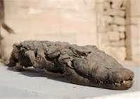 Ancient Egypt Mummies