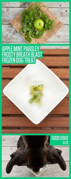 Apple Mint Parsley Frosty Breath Blast Frozen Dog Treat