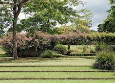 A diferença de nível do jardim é suavizada pelos profundos degraus cobertos por grama. Para sinalizá-los, o paisagista usou faixas de tijolo...