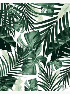 Tropical Jungle Leaves Pattern Window Curtains to wallpaper around windows Art Prints Cute Backgrounds, Aesthetic Backgrounds, Aesthetic Iphone Wallpaper, Cute Wallpapers, Wallpaper Backgrounds, Aesthetic Wallpapers, Trendy Wallpaper, Tumbler Backgrounds, Perfect Wallpaper