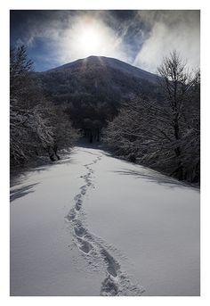 Fotos de Asturias - Galeria de Jose Luis Valdés/Hayedo, Spain