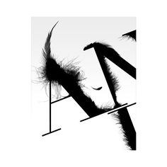 FFFFOUND! ❤ liked on Polyvore featuring text, words, backgrounds, textures and quotes