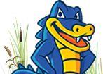 Hostgator Coupon Dode 25% OFF.   For Coupon : syaif25diskon