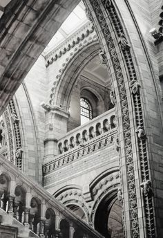 Before I die... I want to visit the Natural History Museum in London